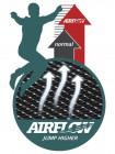 Батут прямоугольный Berg Ultim Champion 330х220 grey